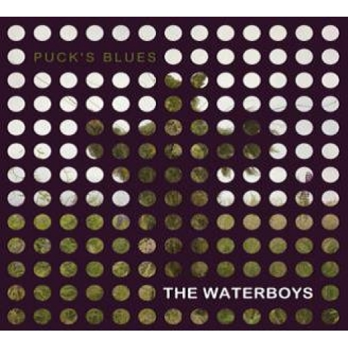 waterboys-Pucks_Rsd_500x500