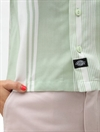 Dickies - Womens Senola Cropped Revere Shirt - Mint